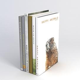 外文书籍模型