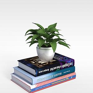 书籍和植物模型
