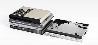 精装书籍模型3d模型