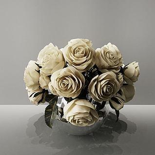 白色玫瑰3d模型