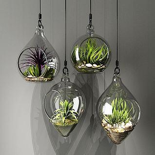 玻璃吊瓶植物3d模型