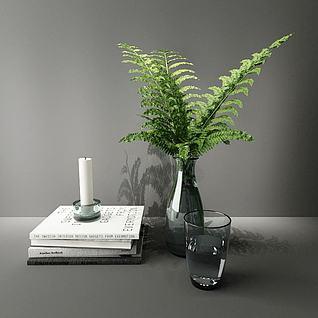 蕨类小绿植3d模型