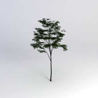 一棵树模型3d模型
