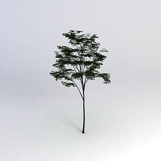 一棵树3d模型