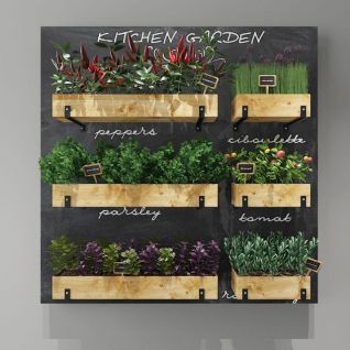 墙壁植物架3d模型