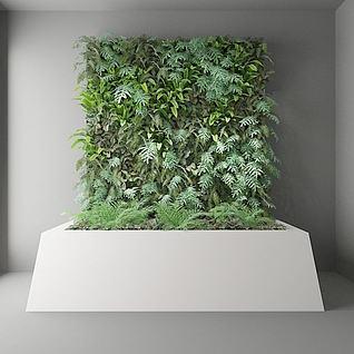 植物墙3d模型