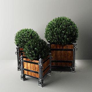 室外植物3d模型