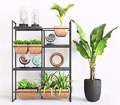 花架盆栽组合模型3d模型