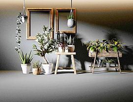 北欧植物组合模型