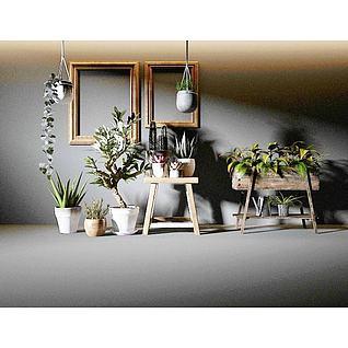 北欧植物组合3d模型