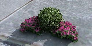花草模型3d模型