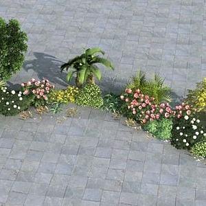 植物组模型