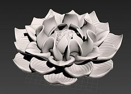 多肉花卉模型