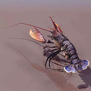 小龙虾模型3d模型