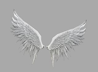白色翅膀模型3d模型