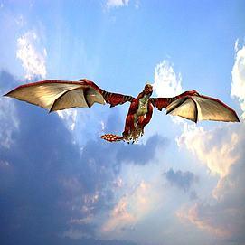 飞翔的火龙模型