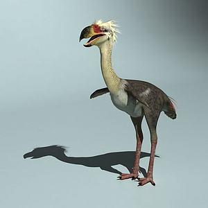 恐鹤恐龙模型3d模型