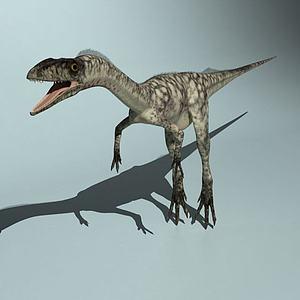 腔骨龙模型3d模型
