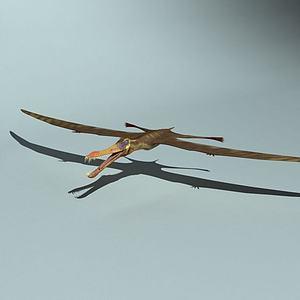 亞氏翼龙模型3d模型