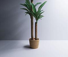 小绿植模型3d模型