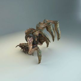 游戏怪物蜘蛛模型
