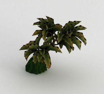 魔兽世界植物装饰