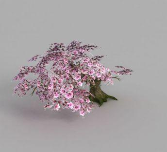 魔兽世界梅花树木造型装饰