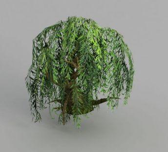 魔兽世界柳树造型装饰