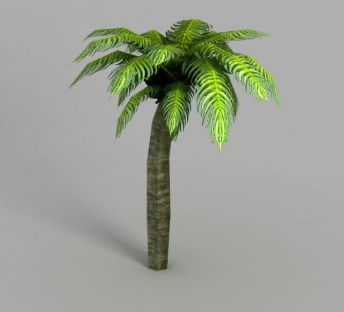 魔兽世界热带树装饰