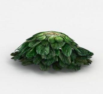魔兽世界灌木花从装饰