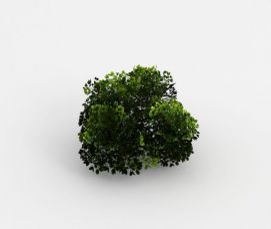 3d魔兽世界<font class='myIsRed'>灌木丛</font>场景装饰模型