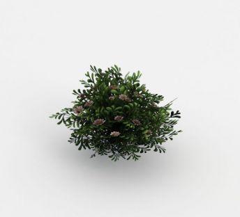 魔兽世界灌木丛场景装饰