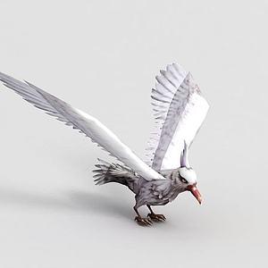 洪荒游戏白海鸥模型