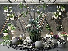景观植物模型3d模型