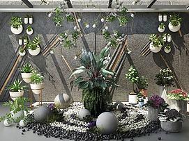 景观植物模型