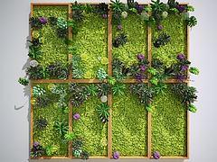 植物墻綠植墻景觀墻花卉3D模型