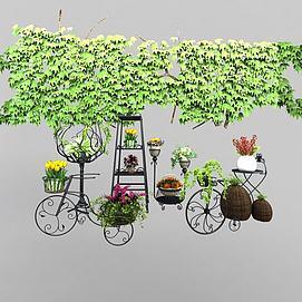 植物装扮模型