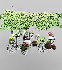植物藤蔓模型