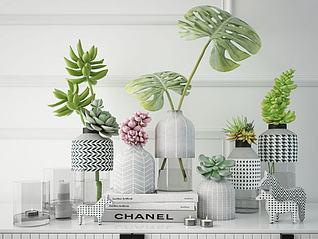 北欧绿植花瓶摆件组合3d模型