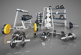 体育运动器材模型