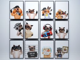 猫狗动物装饰画模型