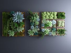 植物墙绿植墙景观墙模型
