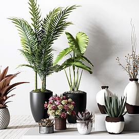 绿植花卉盆栽组合模型