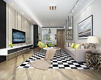 现代客厅黑白格地垫3d模型
