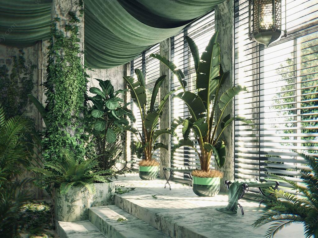 盆栽墻藤綠植組合