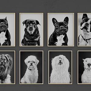狗狗装饰?#20132;?#27169;型