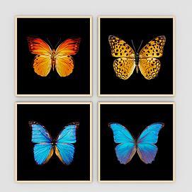 蝴蝶装饰画?#20132;?#32452;合模型