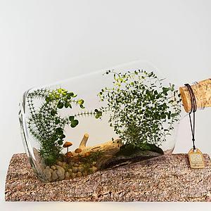 现代清新玻璃瓶植物模型