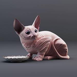 斯芬克斯猫模型