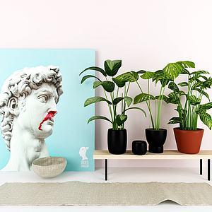 现代植物盆栽模型